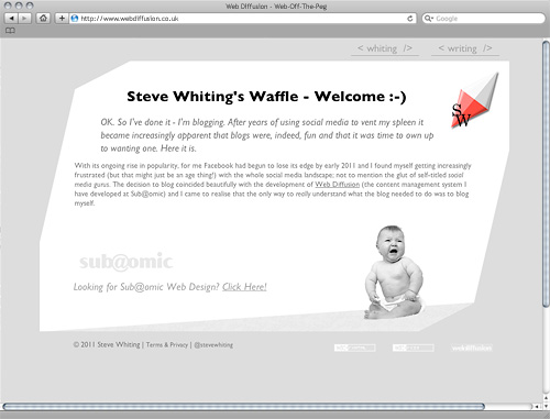 Steve Whiting Web Diffusion website design